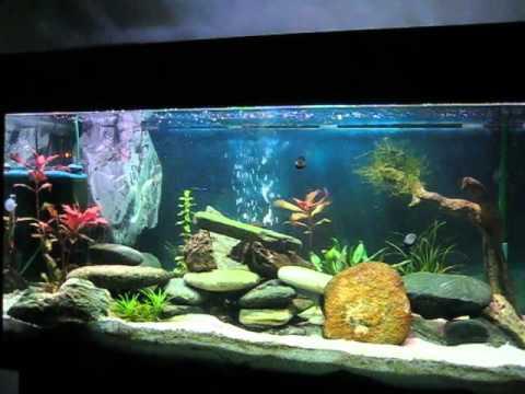 Programmierbare Aquarienbeleuchtung - YouTube