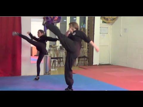 Download Choy Li Fut Kung Fu | Crane form demonstration.