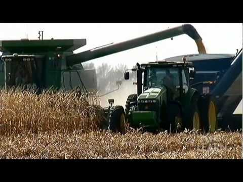 Science of Innovation -- Biofuels
