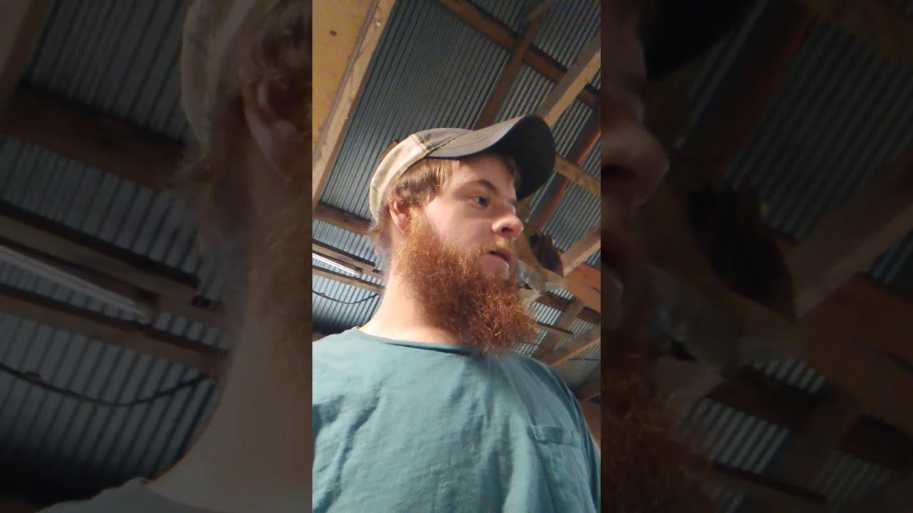 2016 honda foreman exhaust o2sensor