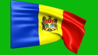 Moldova Flag Animated