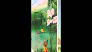 Video I am a Bunny - Read the Blessed Pages - Belle & Sebastian download MP3, 3GP, MP4, WEBM, AVI, FLV Maret 2018