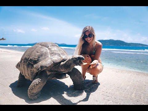 MAIA Luxury resort & La Digue Seychelles drone views 💓🌴💦🐠