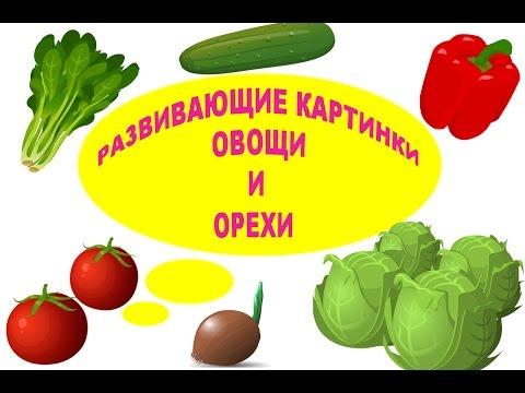 РАЗВИВАЮЩИЕ КАРТИНКИ ОВОЩИ И ОРЕХИ...УЧИМ ОВОЩИ И ОРЕХИ...Vegetables and nuts ...