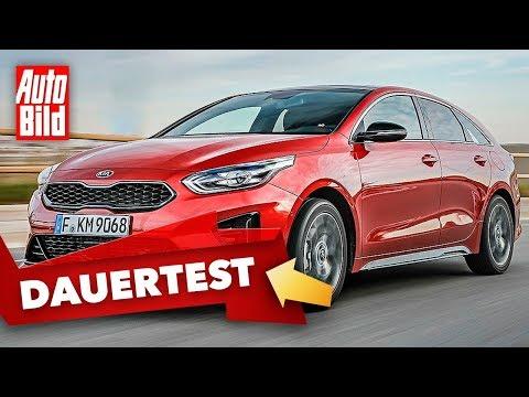 Kia ProCeed GT (2020): Dauertest - Erster Eindruck - Info