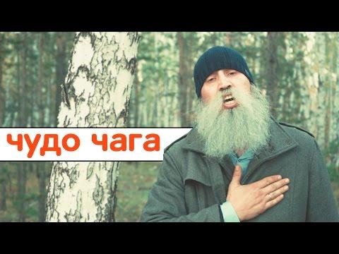 Текст песни(слова) Элина Чага - Пропаду