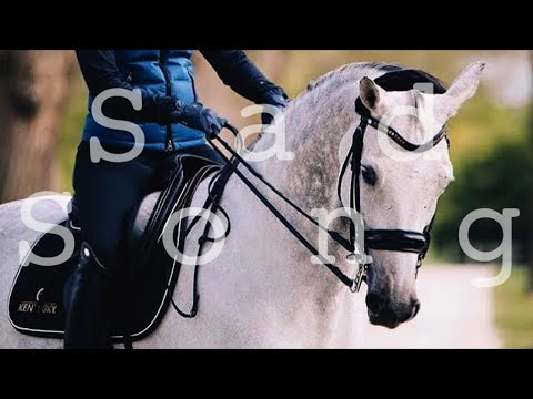 Sad Song || Dressage And Jumping Music Video ||