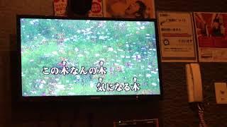 ヒデ夕樹・朝礼志 - この木なんの木