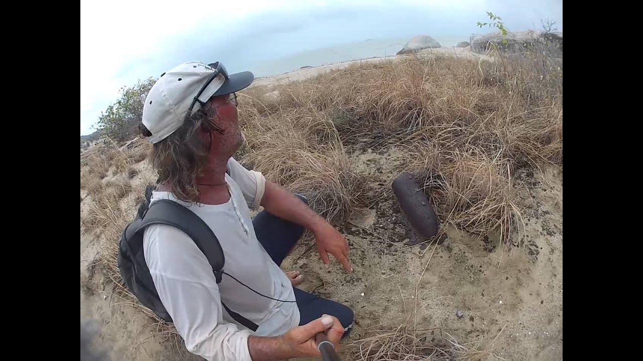 North Queensland Adventurer discovers unexploded ordnance near