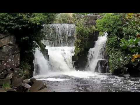 Swansea Ramblers Penllergare Falls
