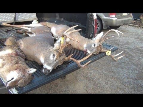 Rifle Buck Season Deer Hunting 2012 - Hunter