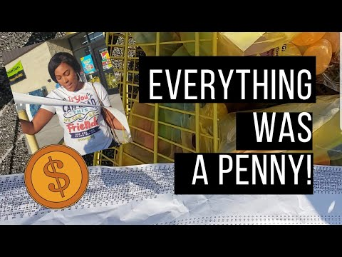 Hurry! Penny Shopping at Dollar General!