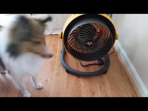 Vornado 293 HD Fan Keep your house cooler on 118* degree days by KVUSMC