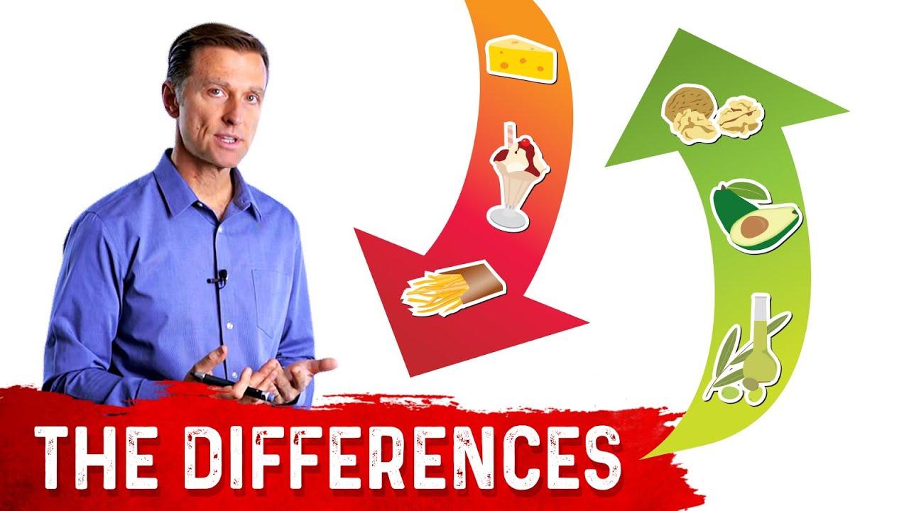 Good Fat vs. Bad Fats