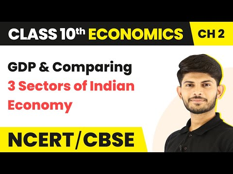 GDP & Comparing 3 Sectors Of Indian Economy | Economics | Class 10th | Magnet Brains