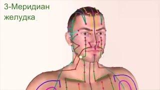 видео 12 меридианов в китайской медицине