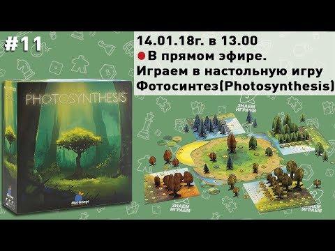 Игровой Стрим / Настольная игра Фотосинтез (Photosynthesis) (обзор и игра)