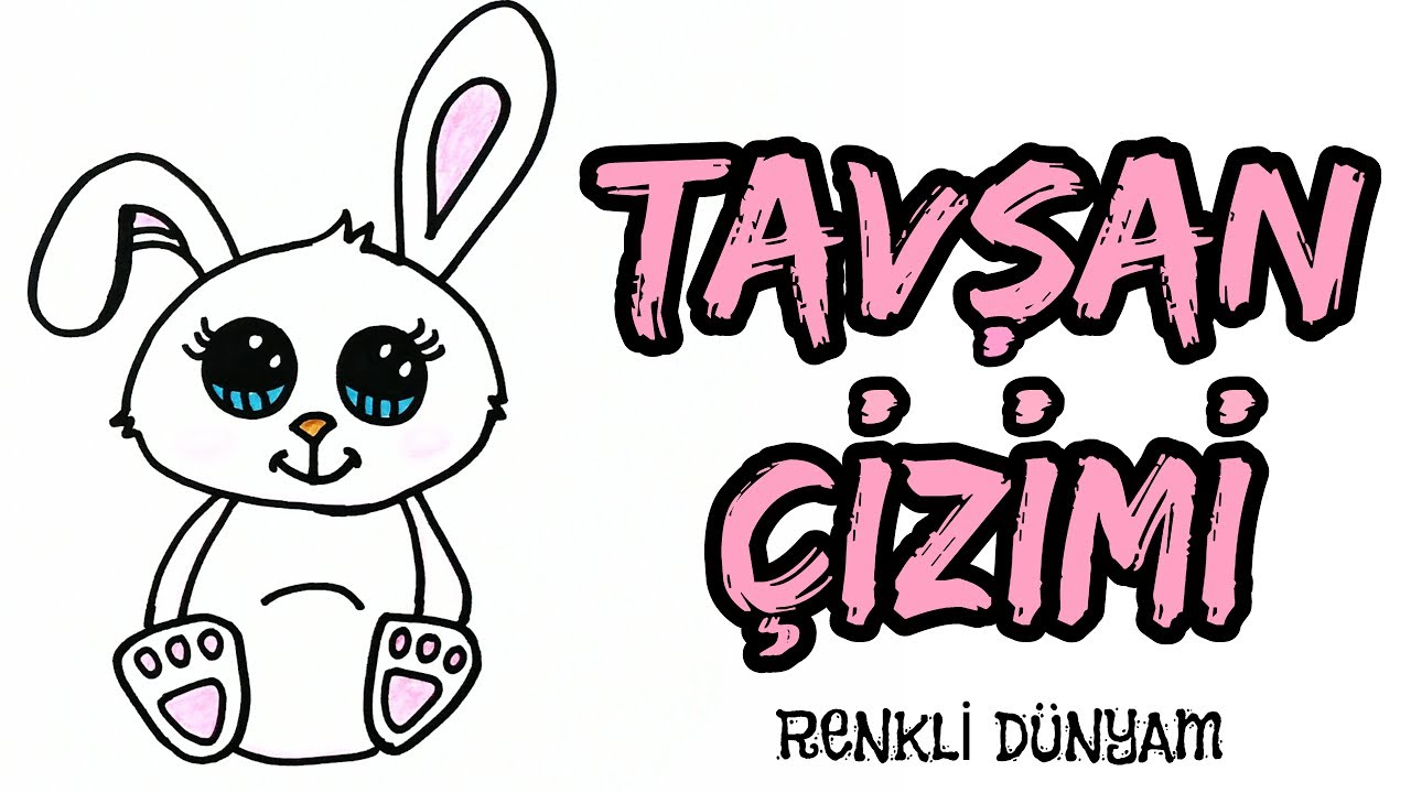 Tavşan Nasıl çizilir Tavşan çizimi How To Draw A Rabbit Renkli