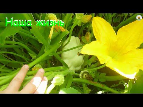 Высоцкий - В сон мне - желтые огни ( редкая запись)из YouTube · С высокой четкостью · Длительность: 3 мин57 с  · Просмотры: более 25.000 · отправлено: 12-5-2013 · кем отправлено: rogovanova60
