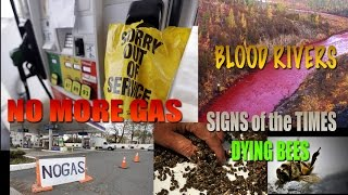 Major Gas Crisis! Gas Stations EMPTY! Mass Animal Die Off Rivers Turn BLOOD RED