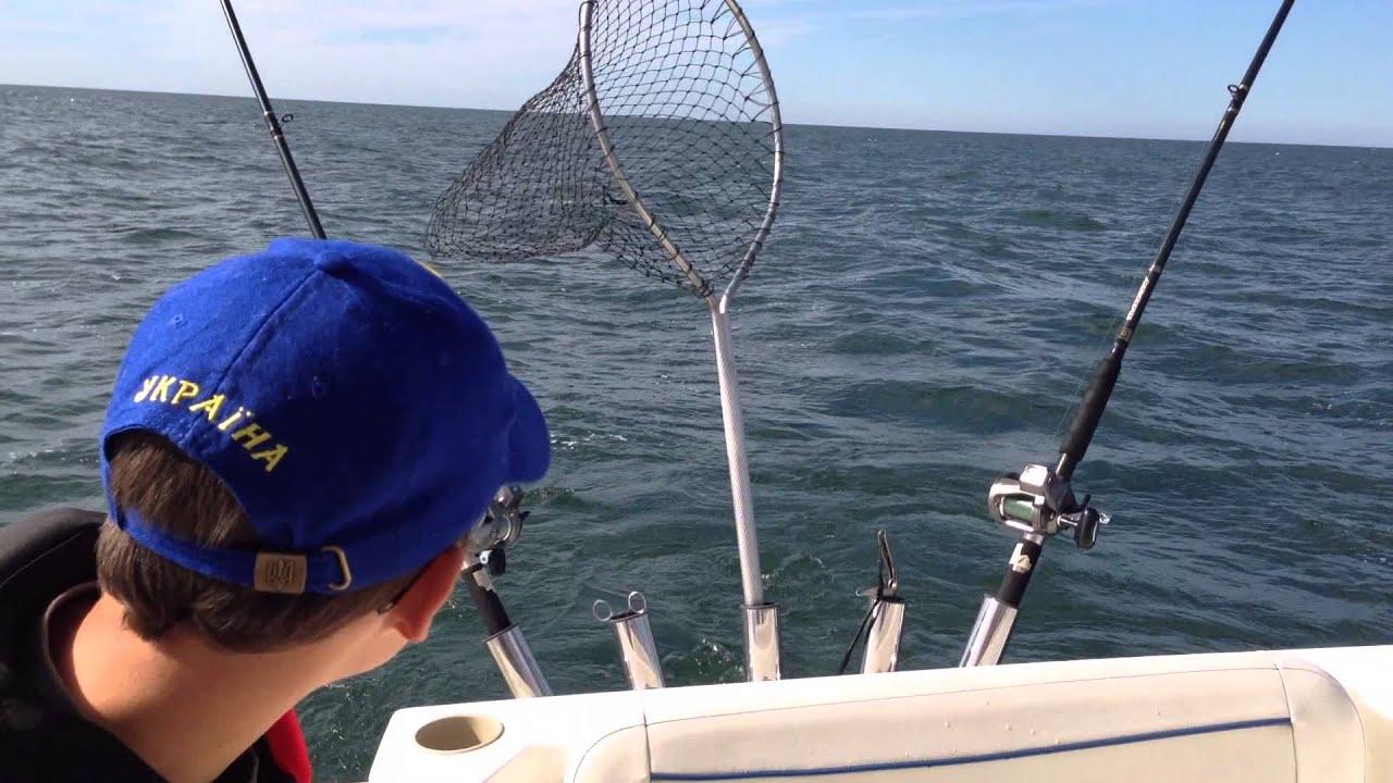 12k In Miles >> September 27, 2014 - Lake Erie Walleye dipsy diver ...