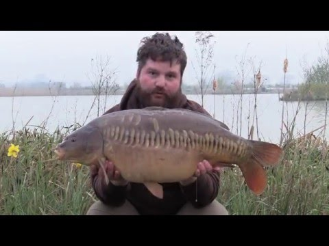 Airfield Lakes Venue Report by John Flewin