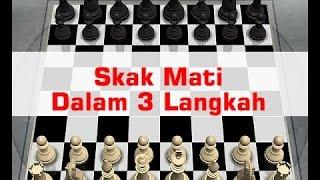 Cara Cepat Bermain Catur Langsung Skak Mat dengan 3 Langkah
