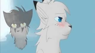 Коты воители - сын луны (клип)