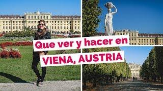 20 Cosas Que Ver y Hacer en Viena, Austria Guia Turistica