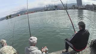 Батуми. Грузия. Рыбалка на море в Батуми. Что на что клюет?