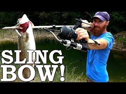 Slingbow Fishing Attempt, Freezing Water Snorkel Spearfish!