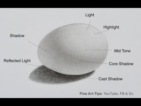 How to Shade - How to draw an egg - Shadows