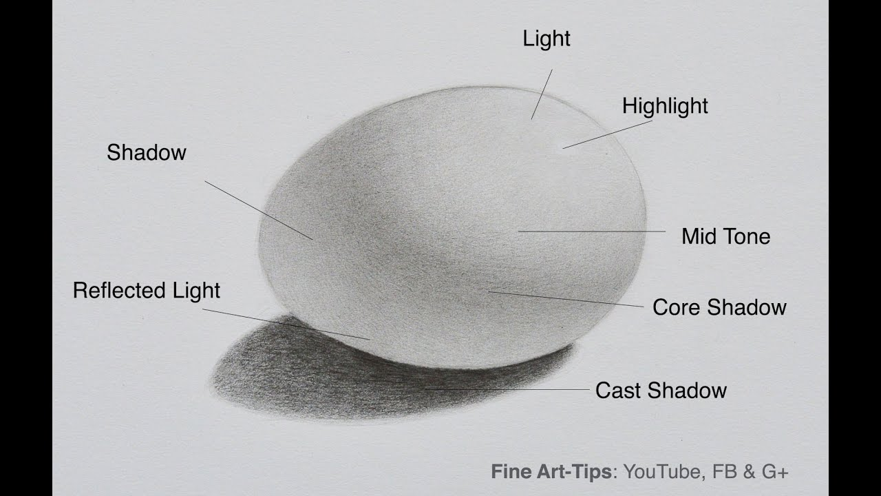 How to shade how to draw an egg shadows youtube pooptronica