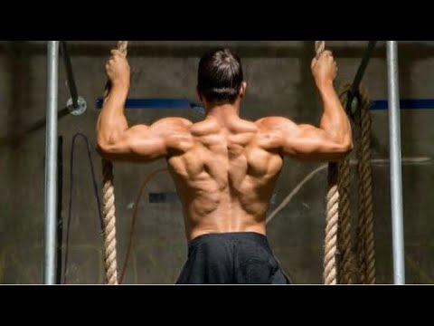 Download Extreme back workouts | delfith health