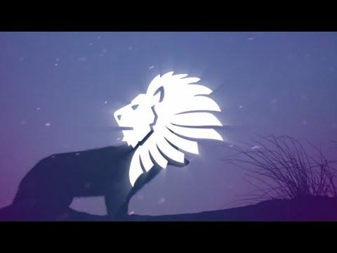 Selena Gomez X Marshmello - Wolves (Renzyx Remix) [Bass Boosted]
