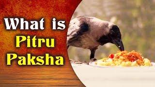 Pitru Paksha - Significance Of Pitru Paksha | पितृ पक्ष का महत्व | What is Pitru Paksha