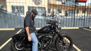 2013 Harley-Davidson Sportster Iron 883 XL883N!