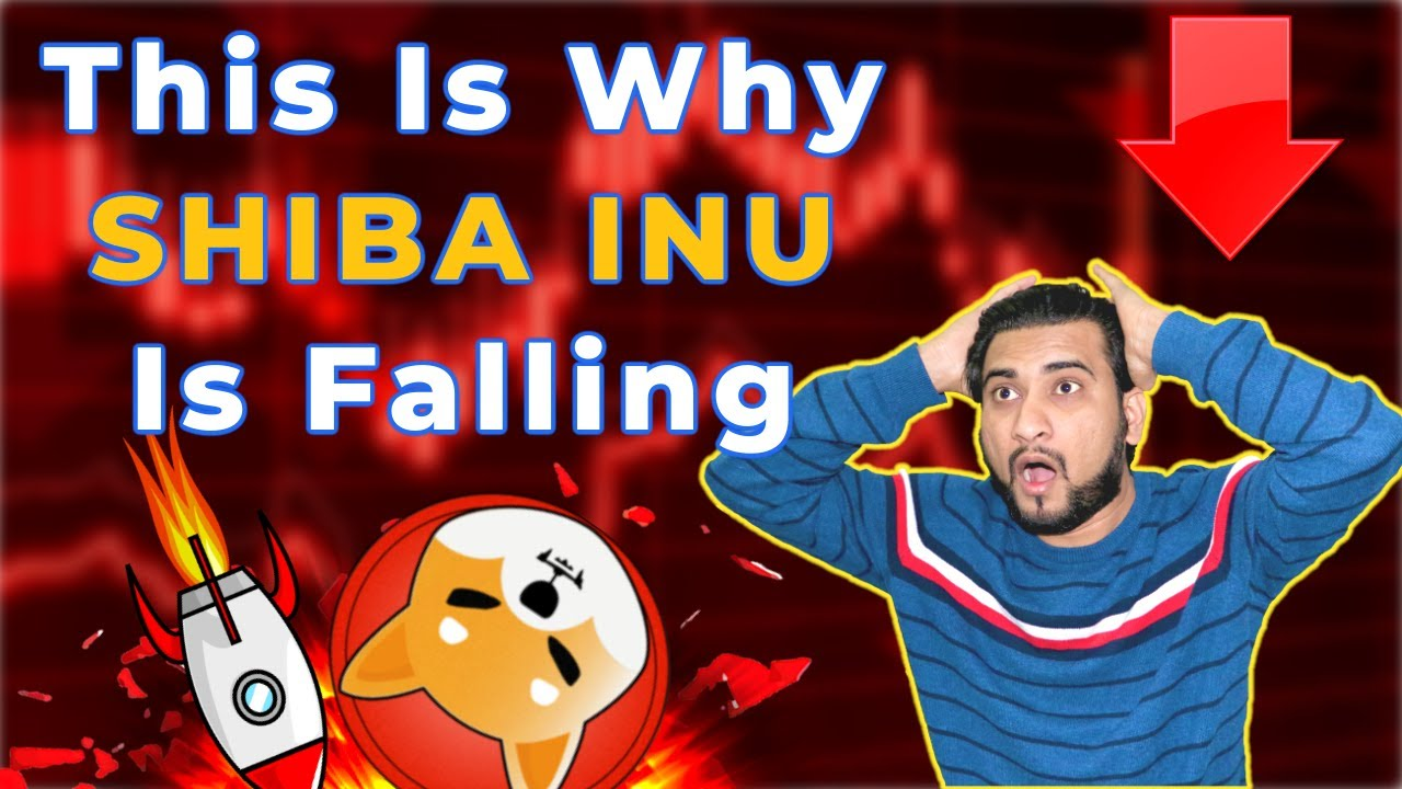 [SHIBA INU] Major Problem Big Reason Why SHIB Coin Is Falling  #shiba_inu