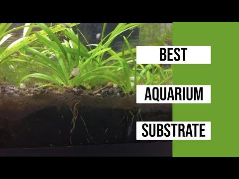 My Favorite Aquarium Substrate For Planted Aquariums