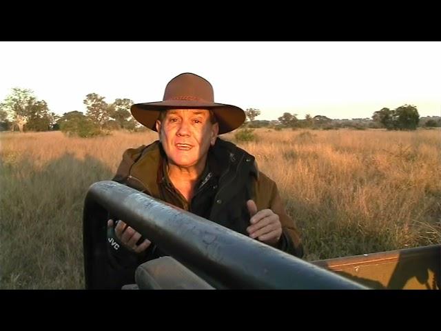 Surviving Africa The Wildlife Man TV Series