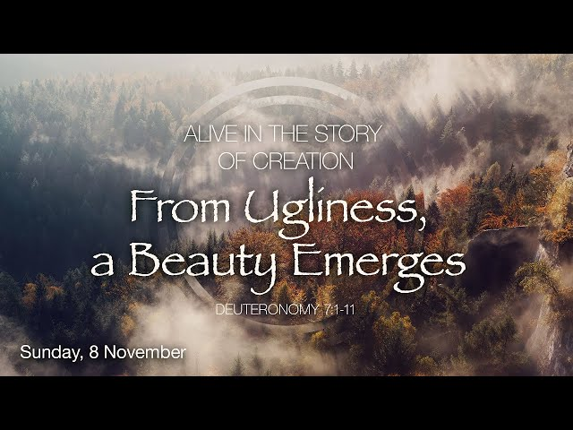 From Ugliness, a Beauty Emerges