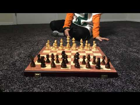 Really cool how often people move pieces in chess (Averages)
