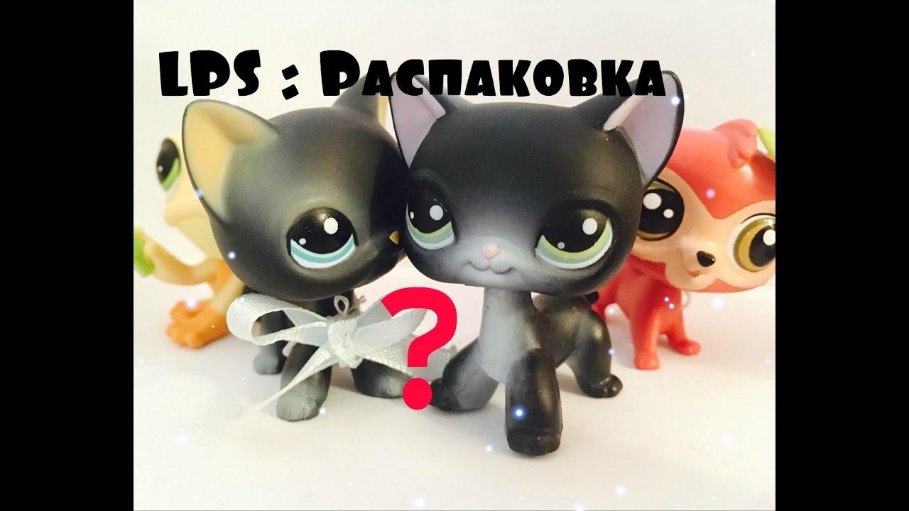 Черный кот высунул язык - YouTube