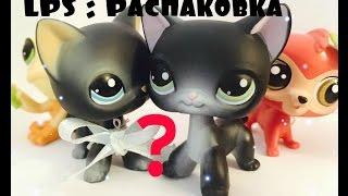LPS:оригинальный черный кот?!/петы из новой коллекции...