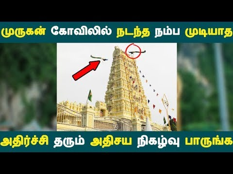 முருகன் கோவிலில் நடந்த நம்ப முடியாத அதிர்ச்சி தரும் அதிசய நிகழ்வு பாருங்க | Tamil News