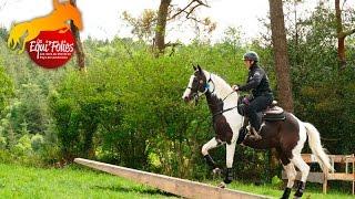 Extrem Cowboy Race - Équipol Landivisiau