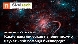 Теория динамических систем — Александра Скрипченко