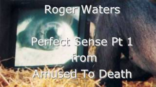 The Other Secret Message on Pink Floyds The Wall and Roger Waters Amused To Death