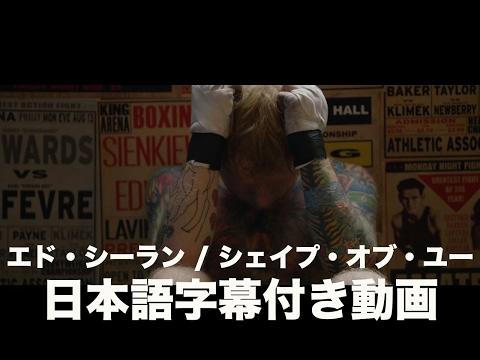 エド・シーラン - Shape Of You(字幕付き)