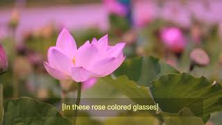 Wendy Lucas & Eric Matthys - Rose Colored Glasses (Lyric Video)